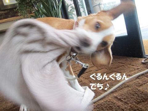 011_20120708110527.jpg