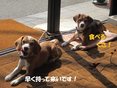 013_20121011123447.jpg
