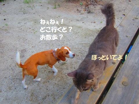 014_20120725135024.jpg