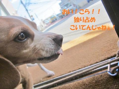 018_20121010143913.jpg
