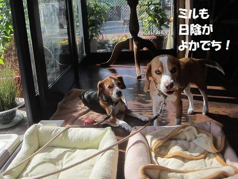 021_20121021112723.jpg