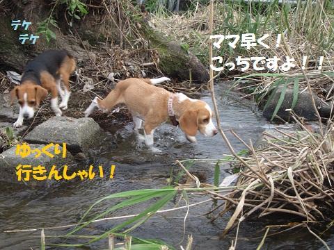 022_20120530140917.jpg