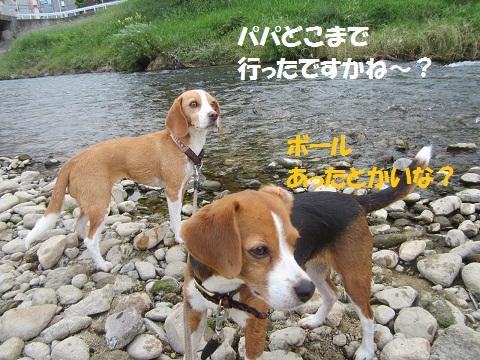 026_20120806171004.jpg