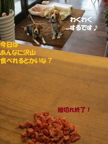 033_20121027150520.jpg