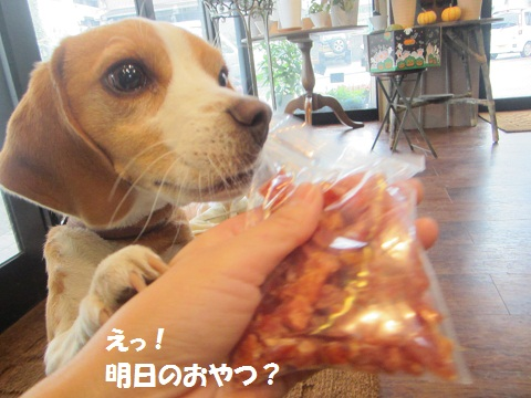 038_20121027150519.jpg