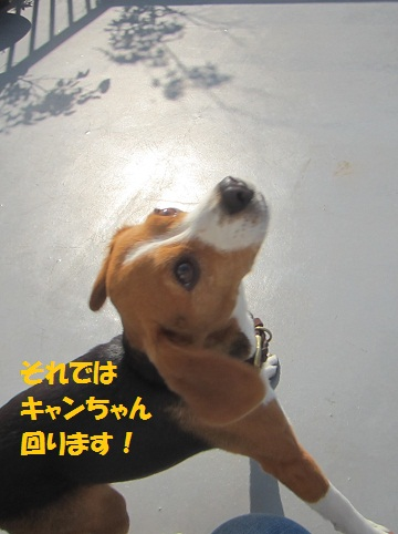 058_20120612161930.jpg
