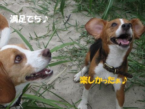 089_20120808152042.jpg