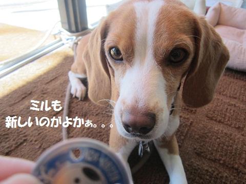 099_20121003115355.jpg
