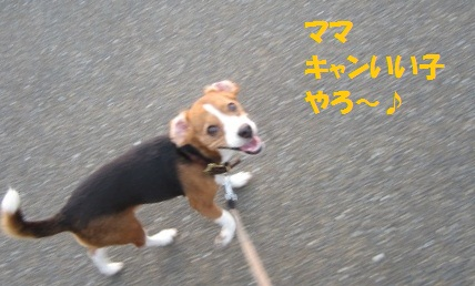 117_20120819070214.jpg