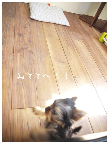 14_20121002180027.jpg