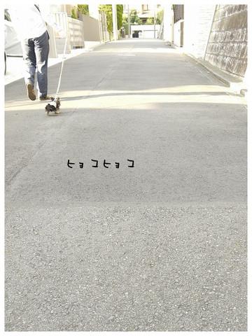 14_20121021174039.jpg