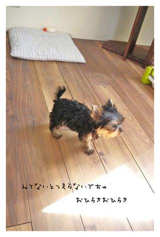 15_20121002182132.jpg