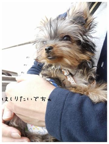 19_20121028103738.jpg