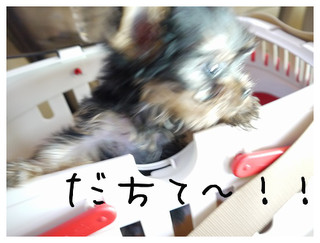 1_20120912201548.jpg