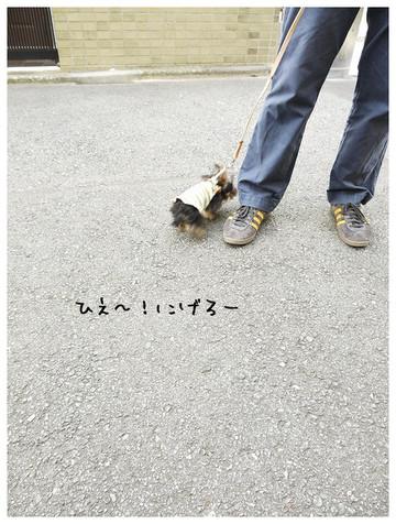 21_20121021174136.jpg