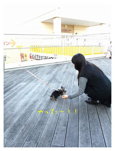 2_20121029174147.jpg
