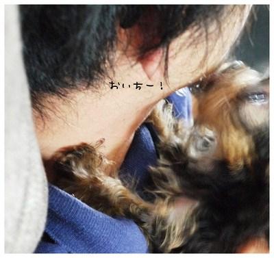 4_20121006001131.jpg