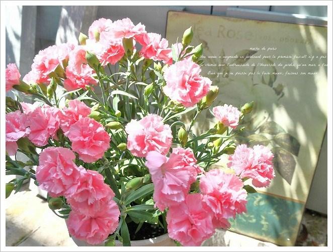 6_20120521093509.jpg