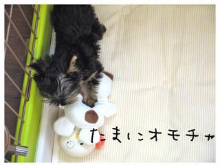 6_20120912201606.jpg