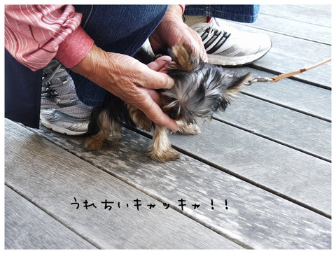 8_20121029174207.jpg