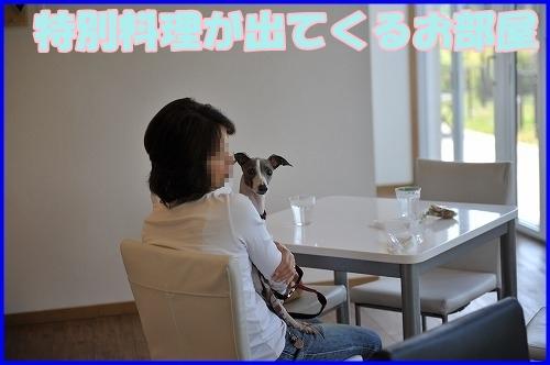 DSC_0900_20120516222124.jpg