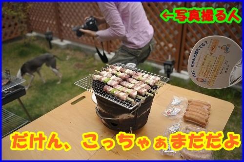 DSC_1062_20120525214903.jpg