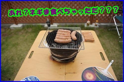DSC_1065_20120525215402.jpg