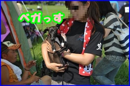 DSC_2067_20120802000429.jpg