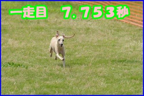 DSC_2089_20120802000509.jpg