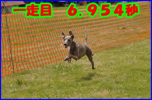DSC_2108.jpg