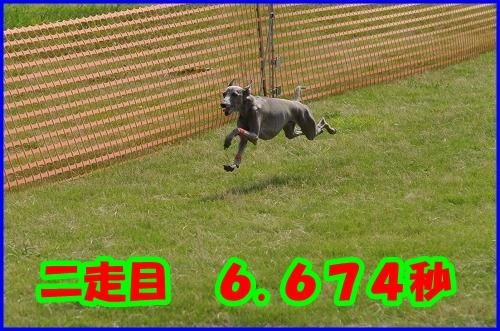 DSC_2158_20120802000650.jpg