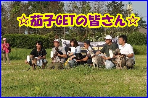 DSC_2193_20120802000846.jpg