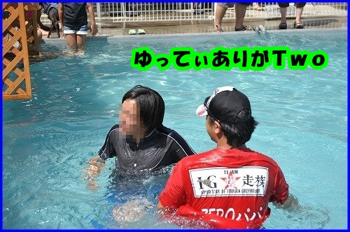 DSC_2313_20120811232701.jpg