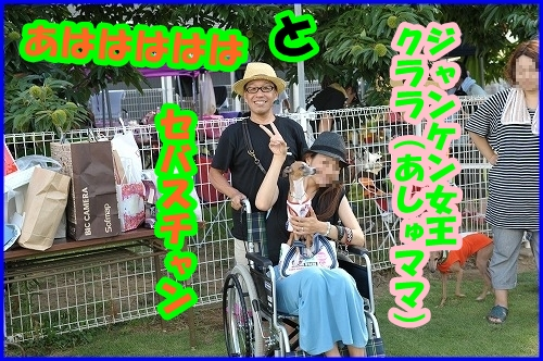 DSC_2491_20120811233539.jpg