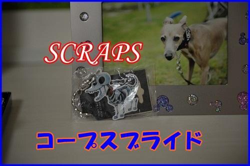 DSC_3580_20121108205646.jpg