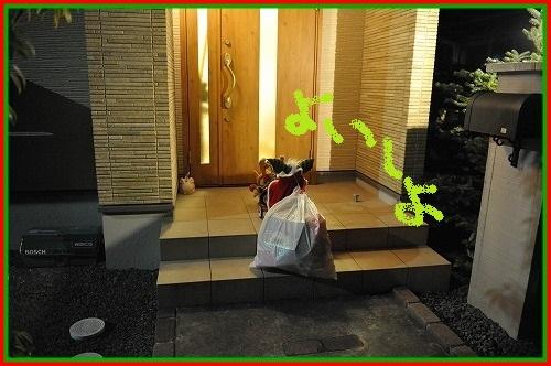 DSC_4334_20121225004617.jpg
