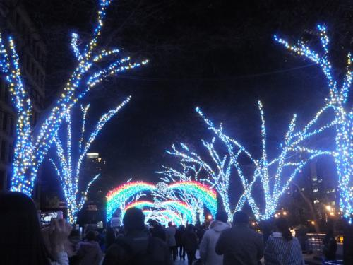 2012-12-20-11