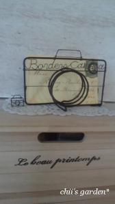 Iron Borders Camera-1