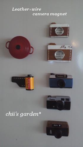camera magnet-3