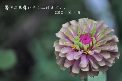 005_20120806160258.jpg