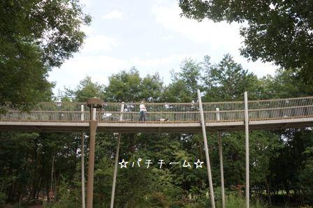 国営アルプスあづみの公園④
