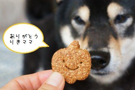 はっぴぃハロウィン③