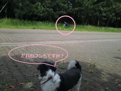 KC3X0208_20120524230955.jpg