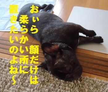 DSC01084_convert_20120712192424.jpg