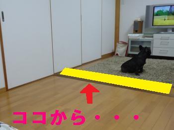 DSC01115_convert_20120707000008.jpg