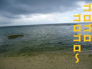 DSC01199_convert_20120718002035.jpg