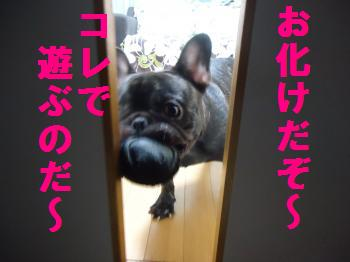 DSC01281_convert_20120812160931.jpg