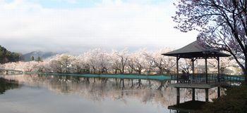 画像 146臥竜公園