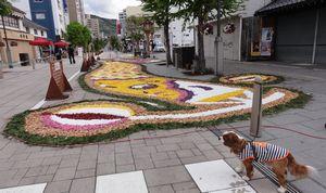 画像 138花キャンバス