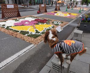 画像 139花キャンバス